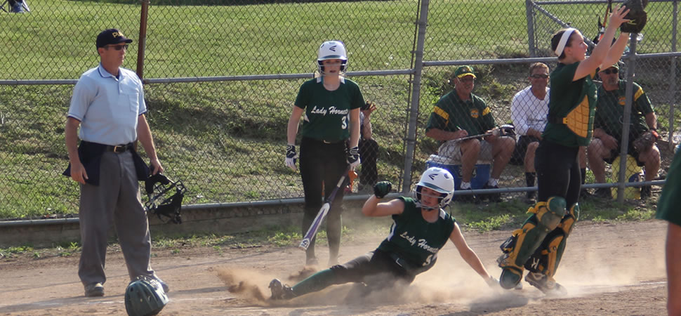 Wellsboro Softball Opponent Records